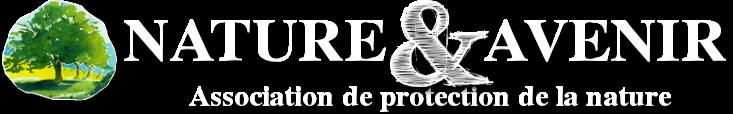 logo%20large2.png